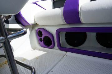 Purple Baja_9