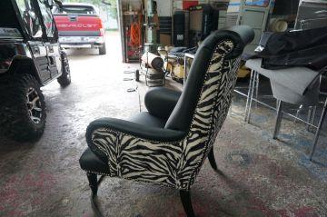 Black Face, Zebra Back_2