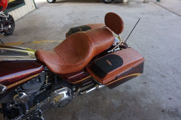 Ostrich Saddle Seat/Bags_1